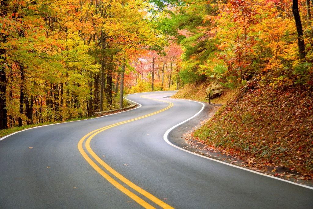 A winding road through fall forest in the Appalachian Mountains. (Source: Dollar Photo Club_